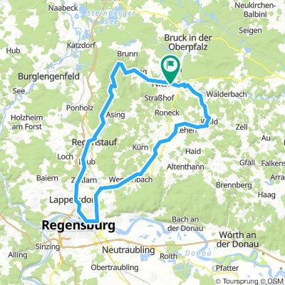 Regental-Wenzenbach-Tour