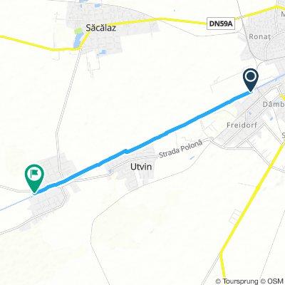 Slow Sunday Track In Timişoara