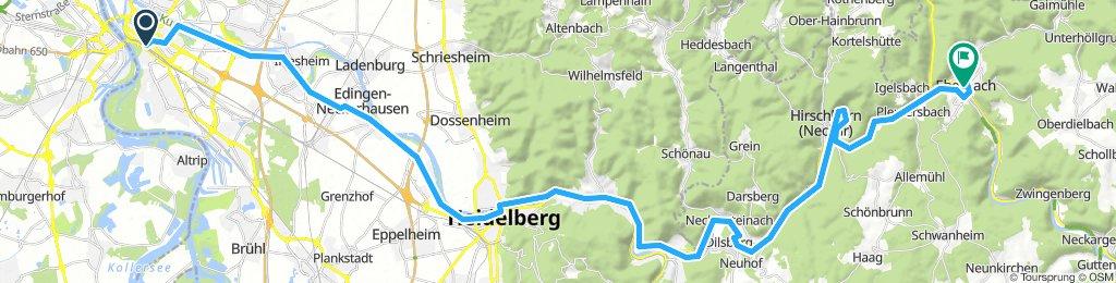 Von Mannheim nach Eberbach