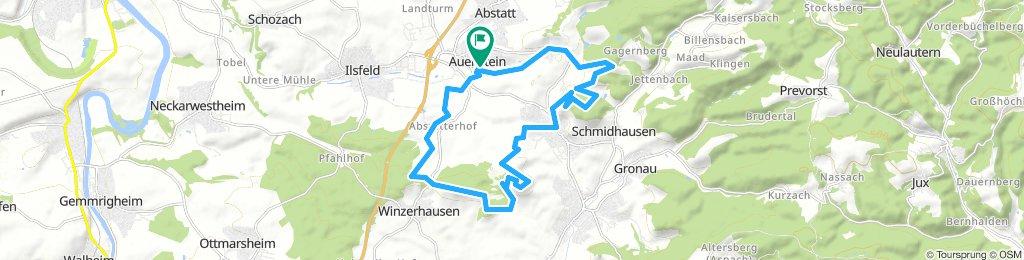 BS_Wunnenstein-Wartkopf-Söhlbach-20km-580hm