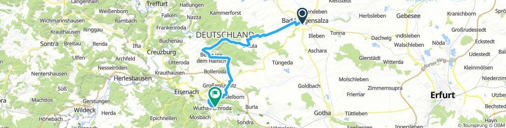 Hainich Gelbe Route