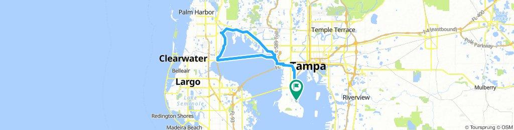 50 miles through Safety Harbor