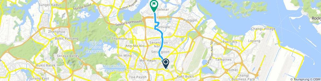 Seletar Route