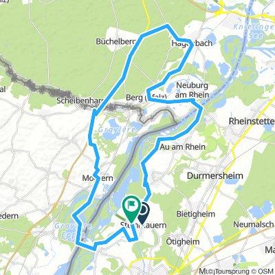 Pfalz Route