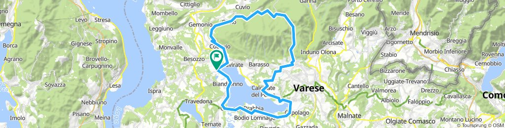 BARDELLO-BARDELLO