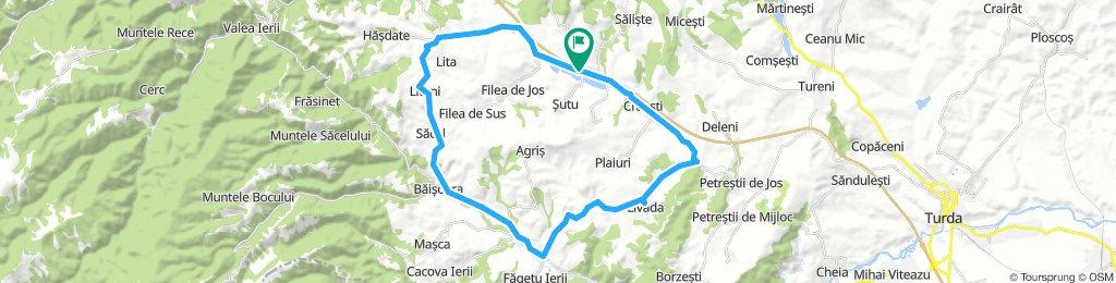 A3-Livada-Iara-Baisoara-Lita