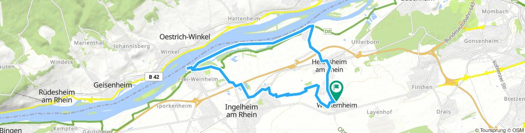 Extensive Sonntag Route In Wackernheim