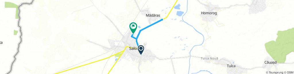 Salonta - Madaras