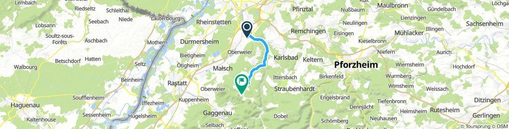 Grüne RR Tour