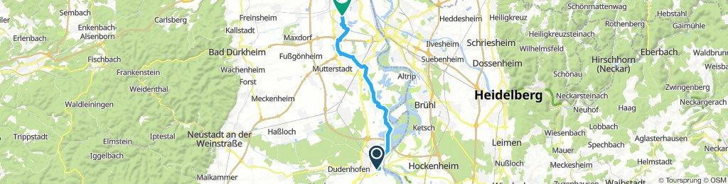 Speyer Dom Rückfahrt