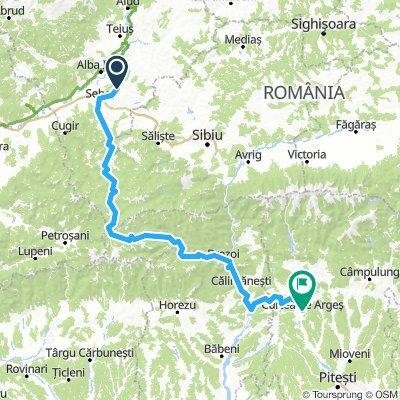 Trans-Carpathian D1