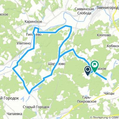 Pokrovskoe 50 km 2