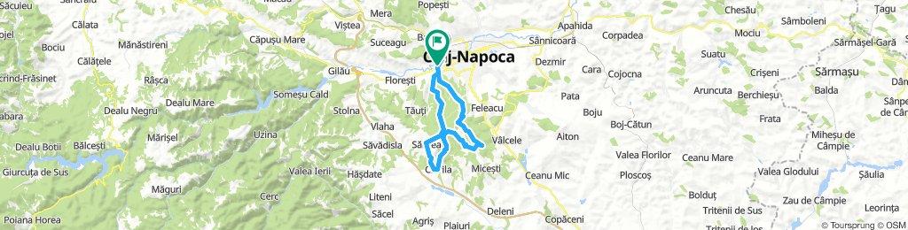 Cluj- Peana-Salicea