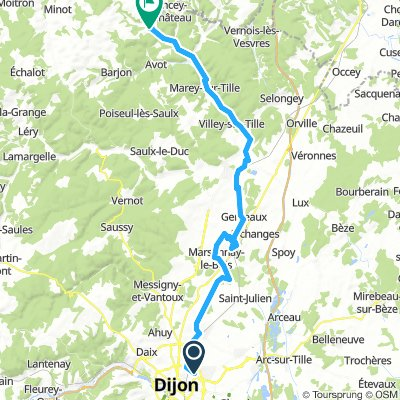 Dijon - courlon