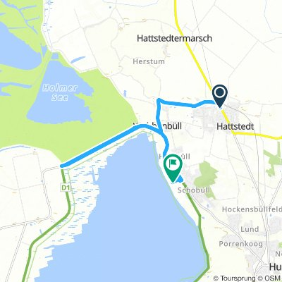 Lengthy Afternoon Route In Hattstedt