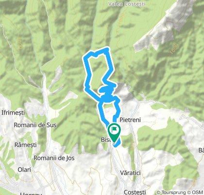 Lykaios - alergare 18,5km