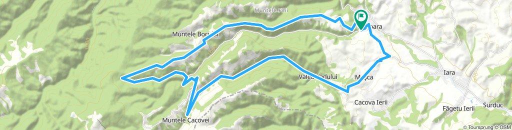 Baisoara - muntele Cacoviei - la Murgu - valea Mamaligii - Gabriana - dealul Penelor - Baisoara
