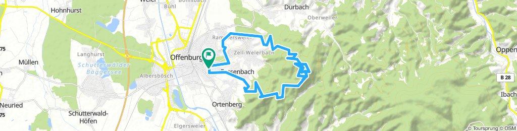 OG-Hohes Horn-Fritscheneck-Zeller Brunnen-Wolfsgrube-OG