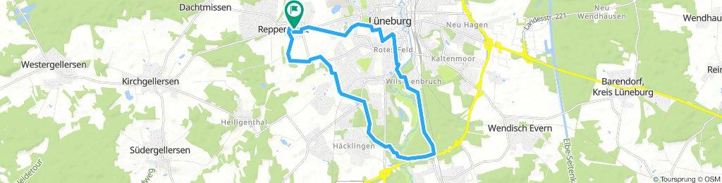 MTB-Tour Reppenstedt - Hasenburg - Wilschenbruch - Reppenstedt
