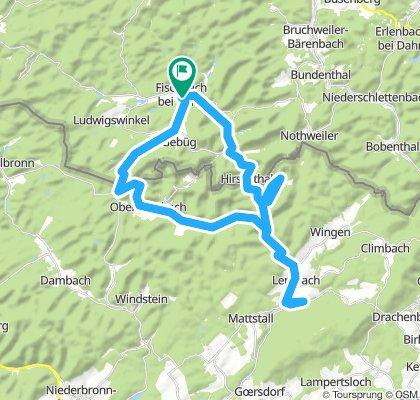 Fleckenstein und Maginot-Linie