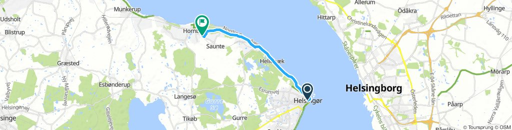 Saturday afternoon, Day 2 to Hornbaek