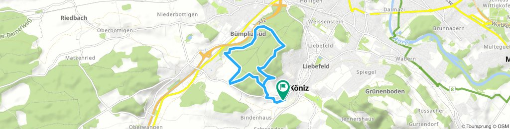 Könizwald mittel 130