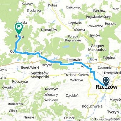 Rzeszów - Blizna