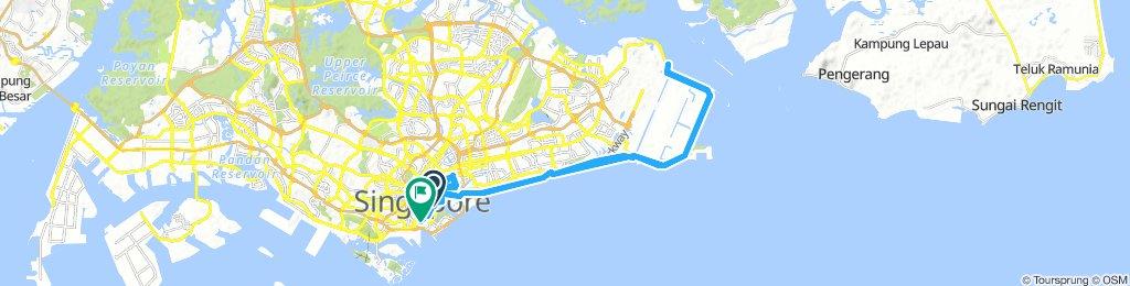 Marina Bay to Changi Beach Park (Via Park Connector Network )