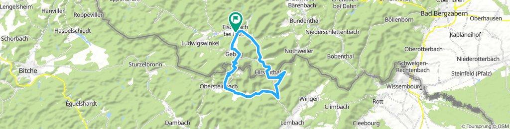 Fleckenstein-Wasigenstein-Blumenstein