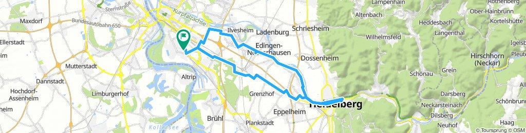 Mannheim - Heidelberg - Rundfahrt
