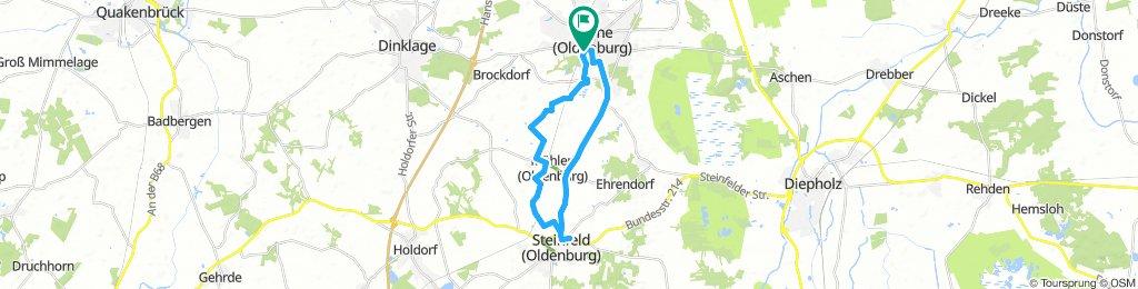 Lohne-Steinfeld