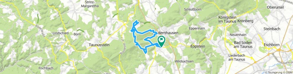 Trail vom Kellerskopf bis Engenhahn