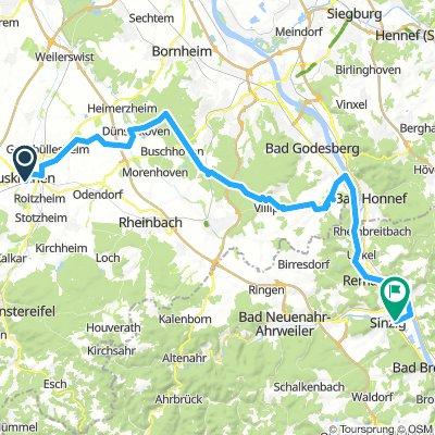 Kottenforst Rheinschine