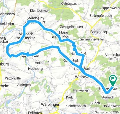 180805_R_Oppl-Steinheim-Poppenweiler-Oppl