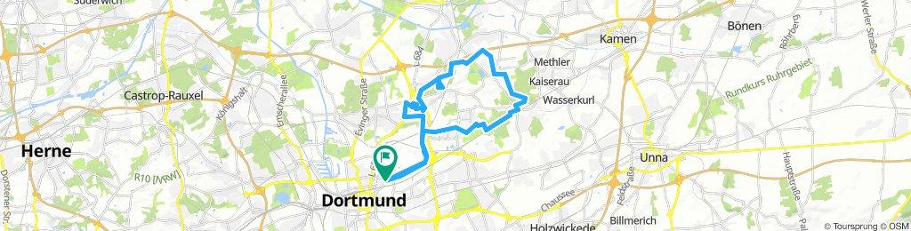 Borsigplatz - Stadtbezirk Scharnhorst Rundtour + Gneisenaupark
