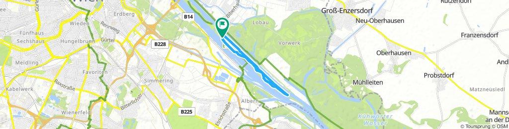Vienna Triathlon Bike