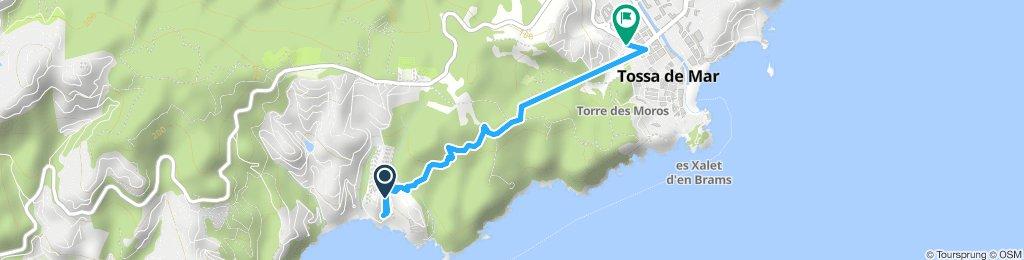 naar Tossa
