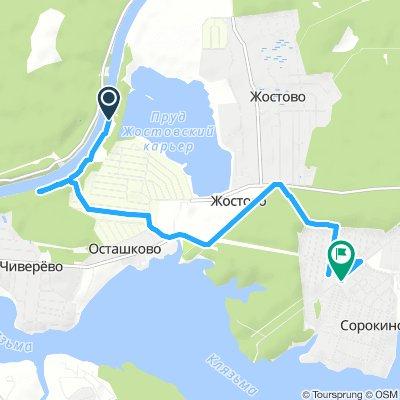 Steady Afternoon Track In Pirogovskiy