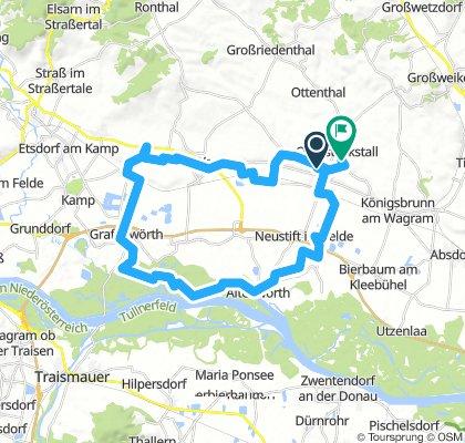 Donauau - GH Goldenes Kreuz - Nimmervoll - Direder