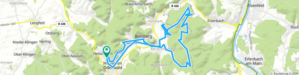 rein in den Wald zwischen Rai-Breitenbach und Eisenbach