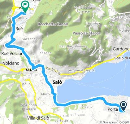 San Felice - Roe