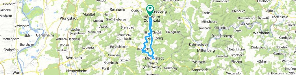 zum Altstadtfest nach Michelstadt