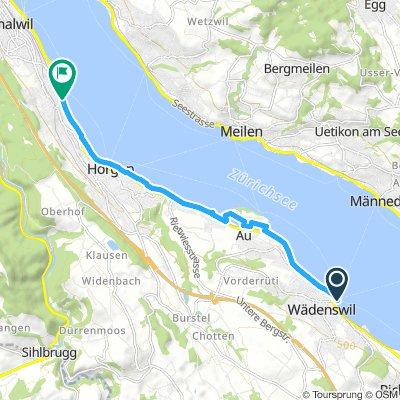 Half Marathon (to Oberrieden)