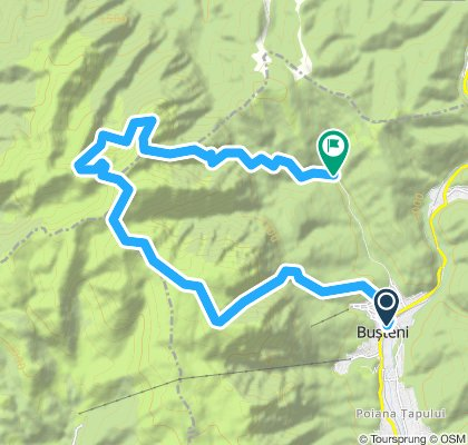 Busteni - Valea Alba - Omu - Brana Caprelor - Bucsoiu - Creasta Balaurului - Gura Diham