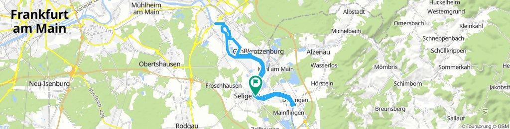 Main-Seligenstadt