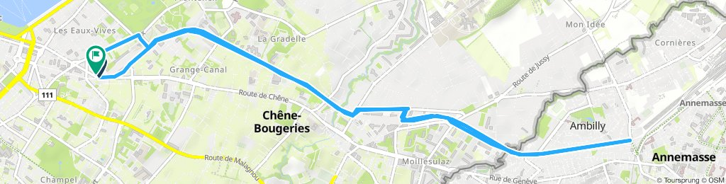 Long Jeudi Course In Genève