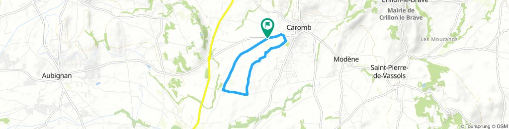 La Syrah (Caromb) - A first ride