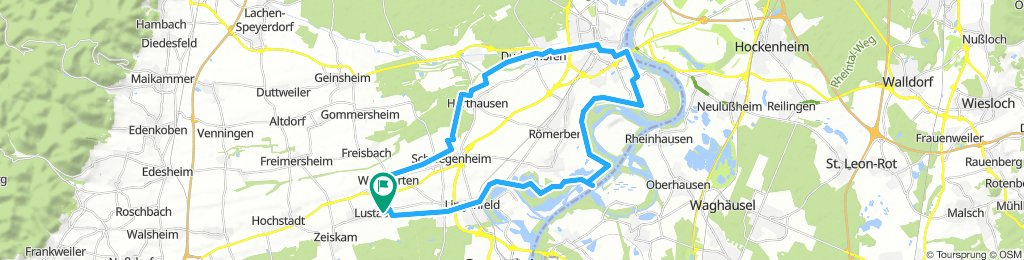 Lustadt - Lingenfeld - Speyer - Dudenhofen - Harthausen - Schwegenheim - Weingarten 2018