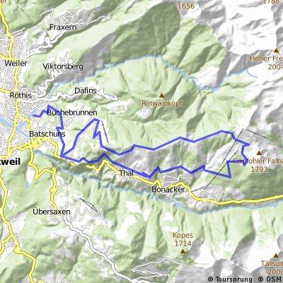 Muntlix - Gapfohl Alpe - Alpwegkopf - Muntlix