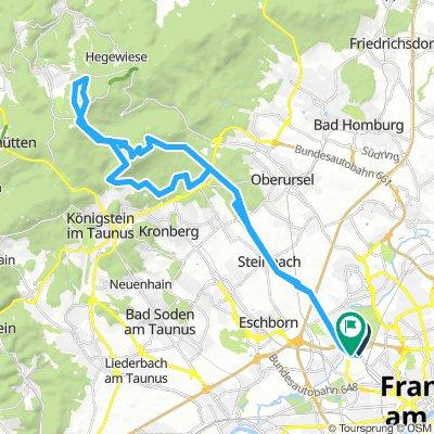 Auf den Altkönig, nähe Frankfurt